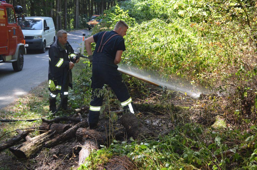 Böschungsbrand in Reintal