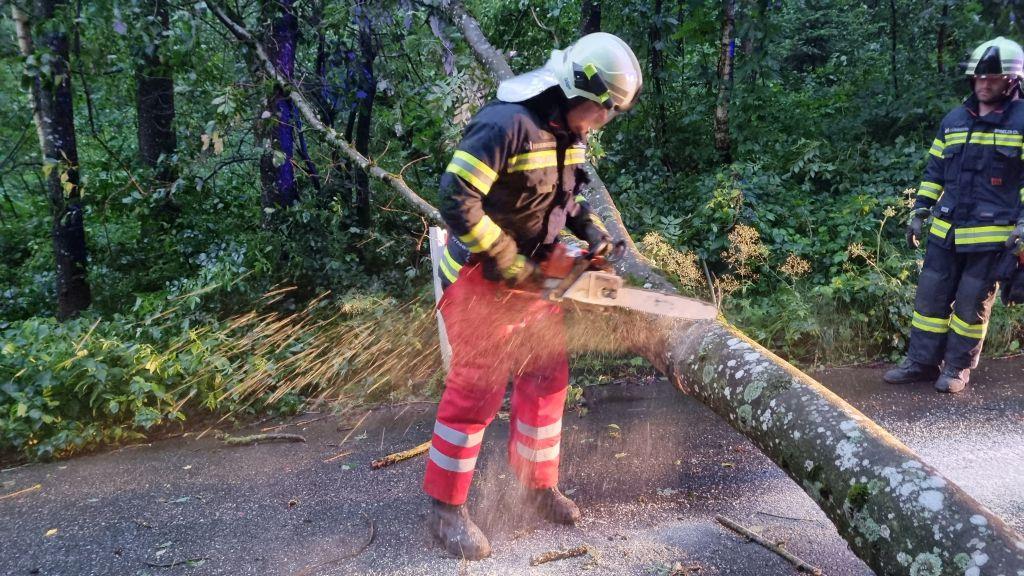 Sturmschaden in Reintal